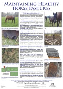 Maintaining-Healthy-Horse-Pastures